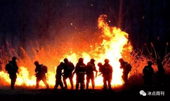 森林消防员在扑火.图片