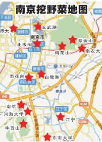 南京春天采摘野菜地图