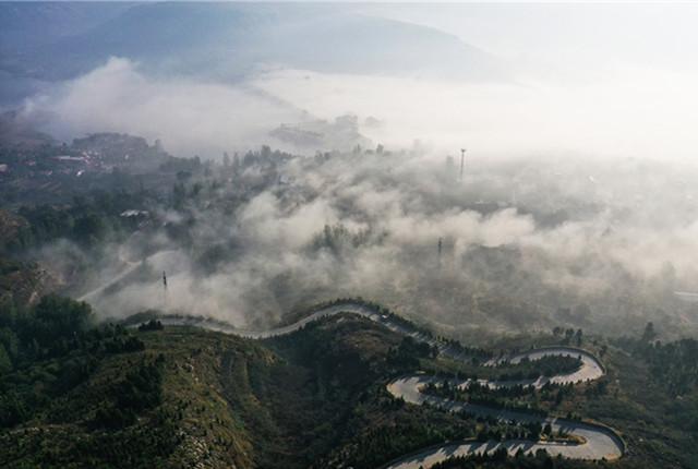 山东枣庄出现平流雾景观