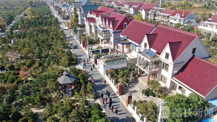 南阳市宛城区教育系统 接受红色教育