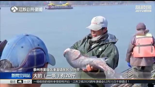 泰州溱湖冬捕,一网拉起30万斤大鱼 感受幸福年味