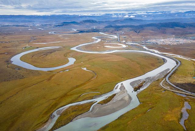 四川阿坝:月亮湾湿地河流流淌 牦牛群草原进食